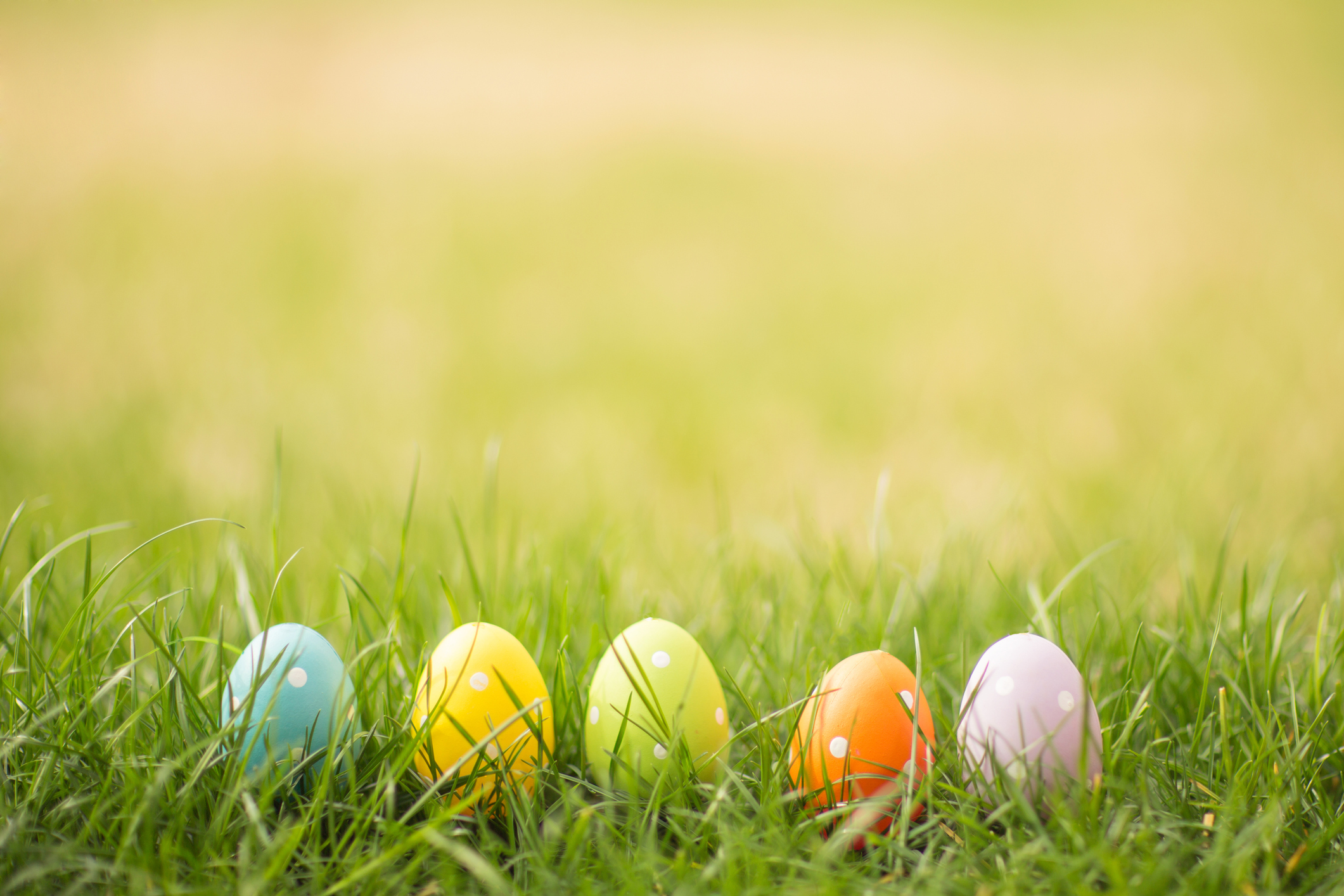 4 Rotten Eggs That May Be Hidden in Your Credit Report
